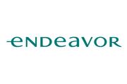 Endeavor perfil